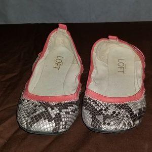 Ann Taylor Ballet Shoes